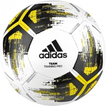 ADIDAS TEAM TRAININGPR (C22233)