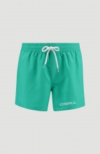 ONEILL PM SUN&SEA SHORTS (0A3242M-6151) SALINA GREEN