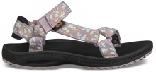 TEVA WINSTED (1017424W-BLOL)