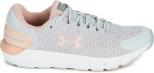 UNDER ARMOUR  Charged Rogue 2.5 (3024403-103)