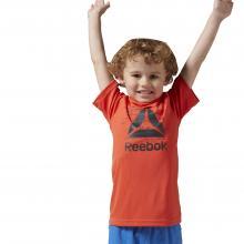 Reebok T-Shirt (BK3378)